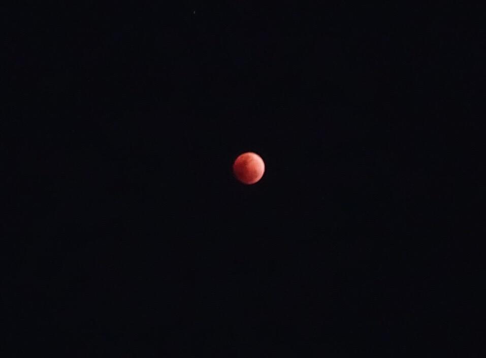 【獅子座満月月蝕のメッセージ】