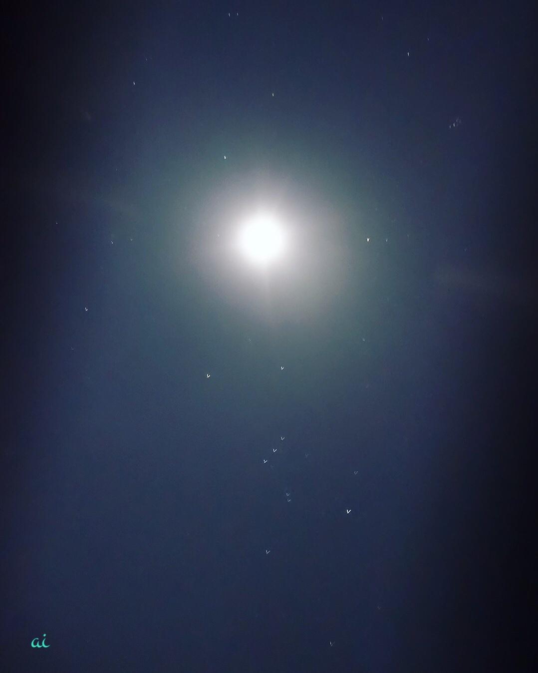 双子座満月の奇跡